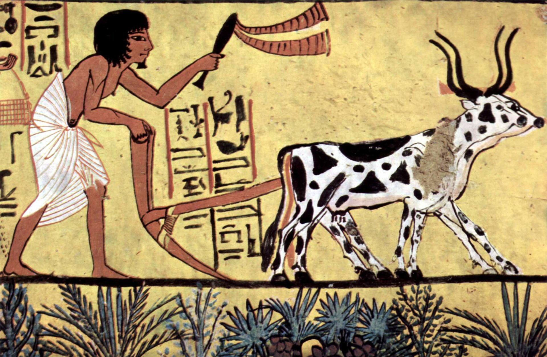 Interesting Facts About Agriculture