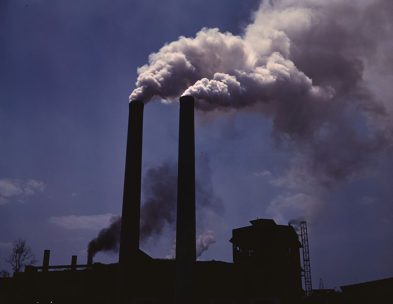 Interesting Facts About Air Pollution